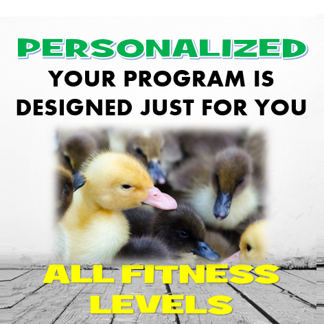 Personalized workout routines - Armageddon Weight Loss - Best weight loss DVD program for women - Best weight loss program for women - 5